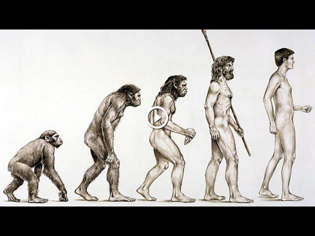 illustrate the evolution of the un as world body and its evolving role 14092018 the david h koch hall of human origins at the smithsonian's national museum of natural history (nmnh) invites the public to explore the depths of our.